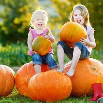 pumpkin time for children in south woodham ferrers