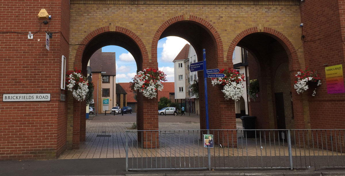 Hanging baskets in south woodham Ferrers